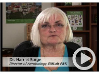 Watch the MoldRANGE Video and Learn from Dr. Harriet Burge!